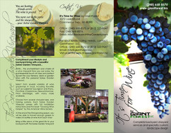 brochure_giant_forest_sm