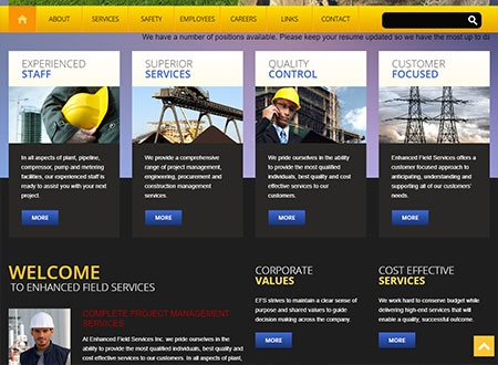 WEBSITE - ENHANCED FIELD SERVICES  -  VIEW LIVE SITE